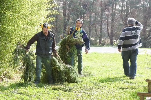 Les compagnons de saint joseph paysagistes brignais vourles for Service de jardinage