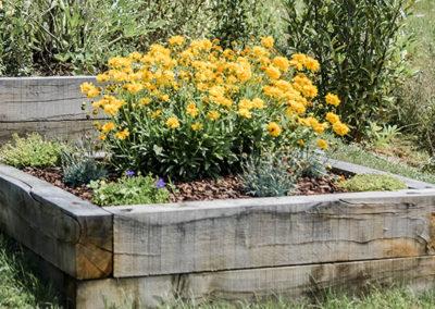 Aménagement des accès d'un jardin en pente et création de carrés potagers – DARDILLY (Mars 2018)